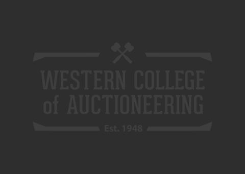 Online Auctions 103