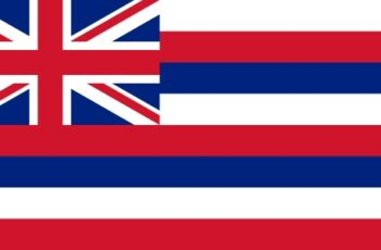 Hawaii Auctioneer License Requirements
