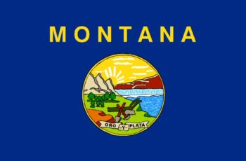 Montana Auctioneer License Requirements