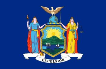 New York Auctioneer License Requirements
