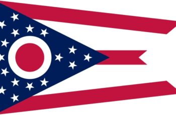 Ohio Auctioneer License Requirements