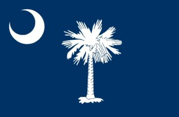 South Carolina Auctioneer License Requirements