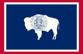 Wyoming Auctioneer License Requirements